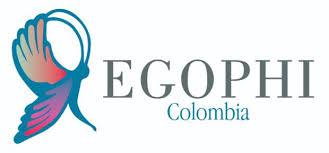 Convocatoria Grupo de expertos en Fisioterapia Oncológica, Cuidados Paliativos y VIH (EGOPHI) de ASCOFI.
